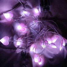 1,5 m 10 lumieres violet peche coeur amour