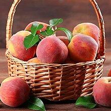 10 Pièces La Pêche Des Graines Fruits Vivaces