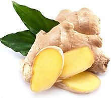 100pcs Ginger Graines Gingembre Zingiber Seed 4