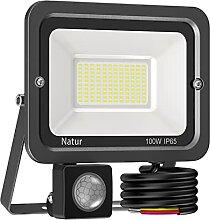 100W Projecteur LED avec Détecteur,10000LM Spot