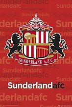 1art1 43444 Poster Football Sunderland Fanion 91 x