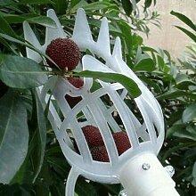 1pc Pratique Cueilleur De Fruits Jardinage Fruits