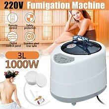 2.0/2.5L Machine de Fumigation maison générateur