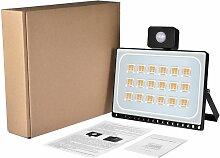 2 PCS 100W Projecteur LED SMD Lampe Extérieure