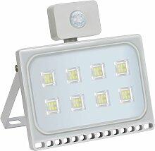 20 PCS 50W Projecteur LED SMD Lampe Extérieure