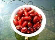 30 Pcs Tropical miraculine Fruit graines