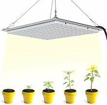 300W LED élèvent la lumière, IP65 150 LED