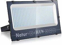 300W Projecteurs LED Éxterieur, 31000LM Spot LED