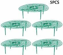 5 Pcs Fraise Supports, Fraise Cadre Stand Balcon