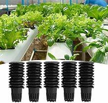 50 Pcs Jardin En Plastique Net Tasses, À Effet De