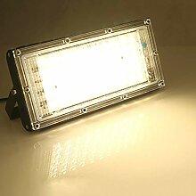50W Projecteur LED Extérieur 4500LM Éclairage de