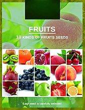 542Pièces 10 Variétés De Graines De Fruits