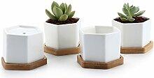 7CM Pot de Succulent en Céramique Hexagone avec