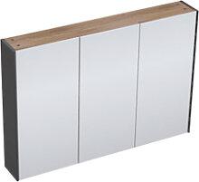 Adema Industrial Armoire de toilette 100x70x15cm 3
