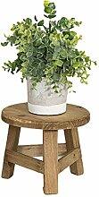 AEROBATICS Support de plante en pot , Support de
