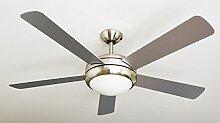 AireRyder FN75539 ventilateur de plafond Ursa avec