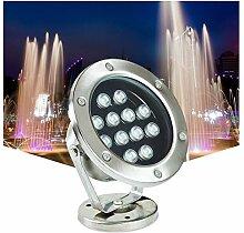 AMDHZ Lumières de Fontaine IP68 Étanche Pleins
