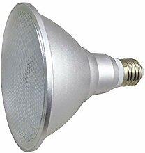 Ampoule LED E27 Base PAR38 15W, IP65 étanche,
