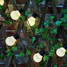 Ampoules LED Guirlande Lumineuse, Étanche IP45