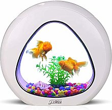 Aquarium de bureau, aquarium petit aquarium