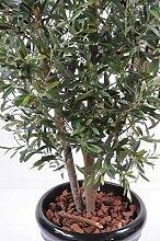 Arbre artificiel, plante semi-naturelle Olivier
