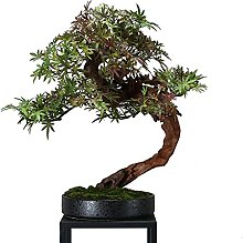 Arbre de bonsaï artificiel Arbre artificiel