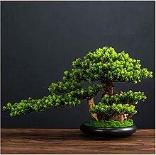 Arbre de bonsaï artificiel Simulation
