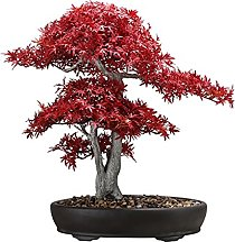 Arbre de bonsaï artificiel Simulation de plante