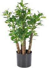 Arbre de Jade artificiel TIDO, 480 feuilles, vert,
