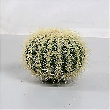 Arbre de simulation Plante cactus artificielle de
