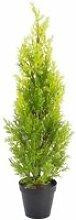 Arbuste artificiel, Cyprès dans un pot, 75 cm -
