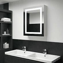 Armoire de salle de bain a miroir LED 50x13x70 cm