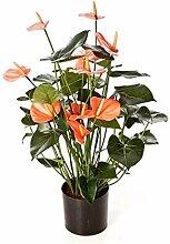 artplants.de Bouquet d'Anthuriums Artificiel,