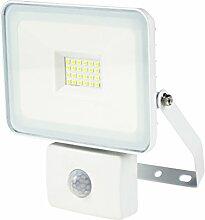 As-Schwabe 46331 Projecteur LED avec Détecteur de