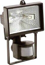 as - Schwabe Projecteur extérieur avec détecteur