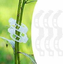AUNMAS Pinces de Treillis de Support de Plante en