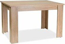 Avit - table élégante salle à manger/salon