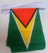 AZ FLAG Guirlande 12 mètres 20 Drapeaux Guyana