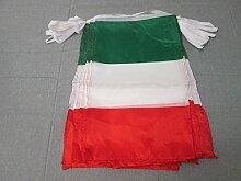 AZ FLAG Guirlande 12 mètres 20 Drapeaux Italie