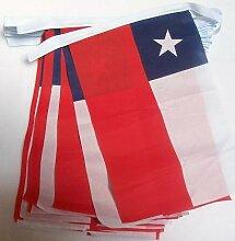 AZ FLAG Guirlande 6 mètres 20 Drapeaux Chili