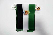 AZ FLAG Guirlande 6 mètres 20 Drapeaux