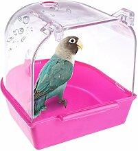 Baignoire à Oiseaux à Suspendre Transparent,
