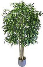 Bambou artificiel de cannes naturelles, idéal