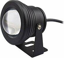 BDSHL Projecteur LED Lumière sous-Marine 10w