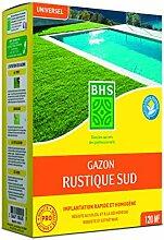 Gazon rustique 3Kg BHS