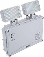 Biard - Double Lampe de Secours 6,5W - Éclairage