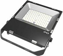 Blanc Froid - Projecteur LED NOVA - 100W - Full