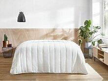 Bobochic - Couette 220x240 antiallergique - Blanc