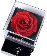 Boîte à bijoux en roses éternelles séchées,