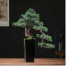 Bonsaï Artificiel Bonsaï artificiel Pine Arbre
